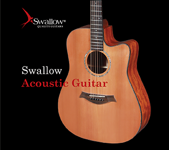 E-Catalogue Acoustic guitar