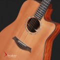 Swallow Acoustic Guitar D700ce